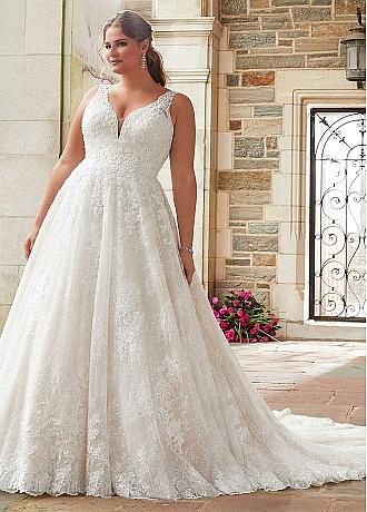 Stunning Tulle V-neck Neckline Natural Waistline Plus Size Wedding Dresses With Beaded Lace Appliques