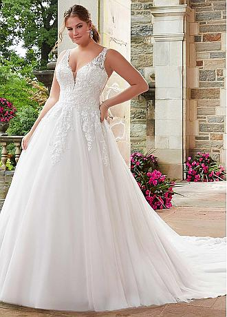 Delicate Tulle V-neck Neckline A-line Plus Size Wedding Dresses With Beaded Lace Appliques